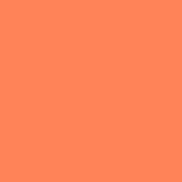 19	(SP)	Light Orange	ff8258
