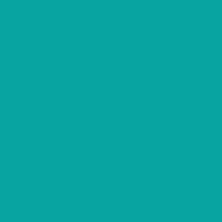 28	(A)	Turquoise	08a4a2