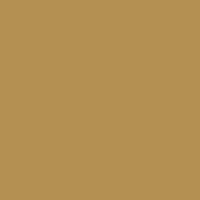 3(A)Camel (N)b49152