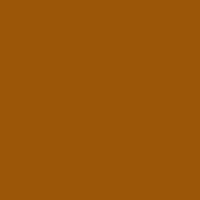 5(SP)Med. Golden Brown (N)9b5608